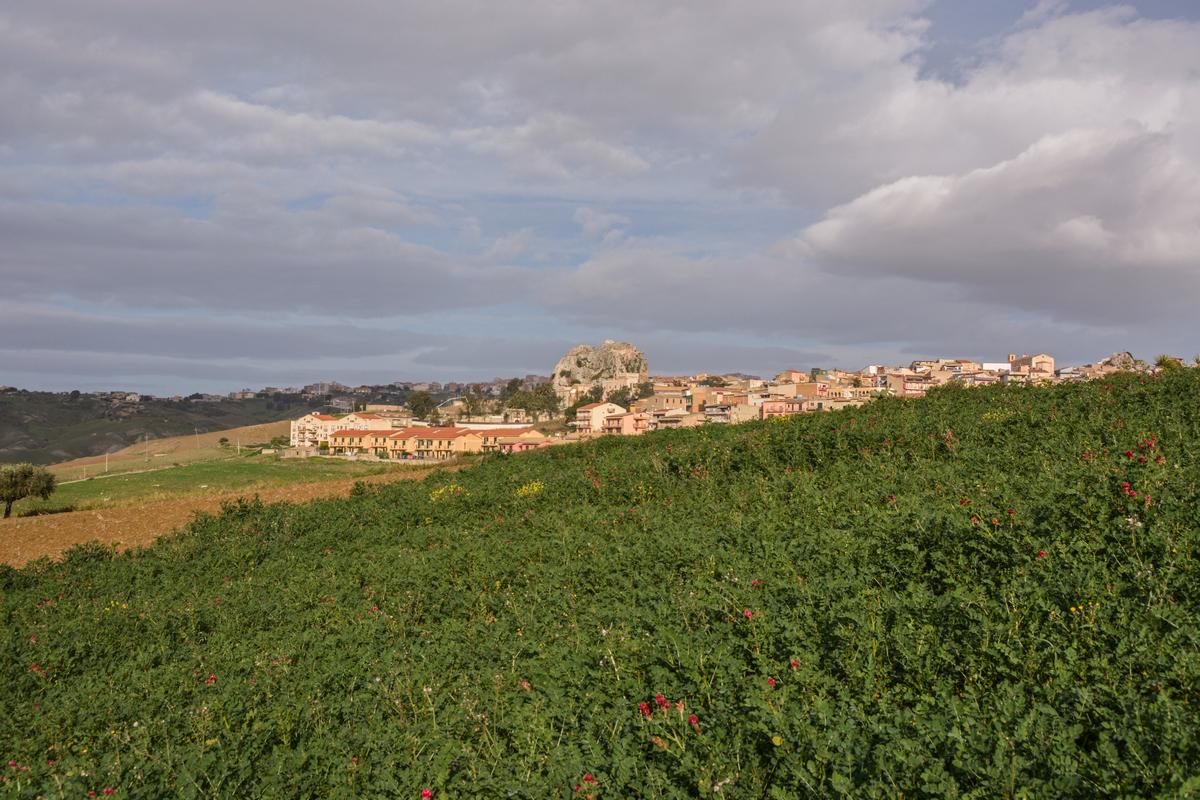 DSC_5423 Joppolo Giancaxio