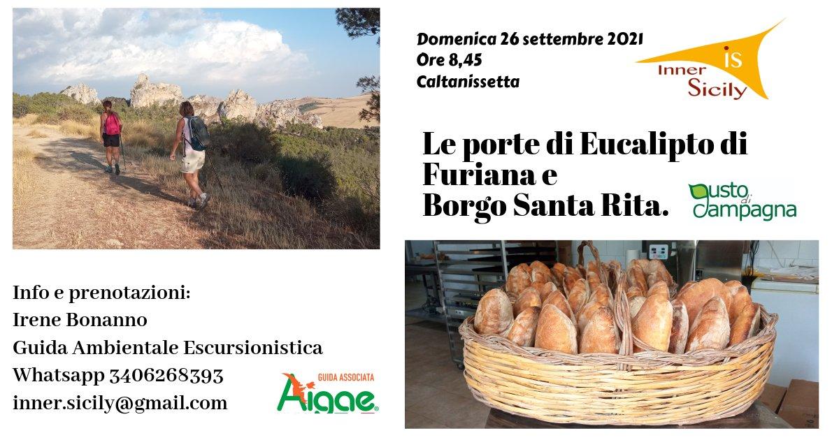 Le Porte di Eucalipto di Furiana e Borgo Santa Rita